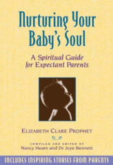 Nurturing Your Babys Soul