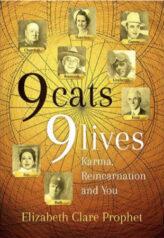 9 Cats 9 Lives